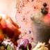 """Blogbeitrag """"Zwei Tage im neuen Berliner Studio"""""""