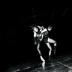 "Blogbeitrag ""Dresden Frankfurt Dance Company"""