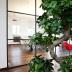 """Blogbeitrag """"Office – Interior Design"""""""