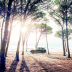 """Blogbeitrag """"Audi Q7"""""""