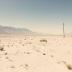 "Blogbeitrag ""Southwestern Deserts"""