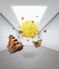 Fliegende Objekte im Raum