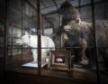 """Newsbeitrag """"Oliver Mark zeigt """"Natura Morta"""" in der Gemäldegalerie der Akademie der bildenden Künste Wien"""""""