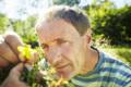 Imagemotive & Imagefilm der Loki Schmidt Stiftung