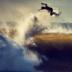 "Blogbeitrag ""World Surf League"""