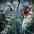 Portfolio von Marc Wuchner