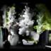 Portfolio von Dirk Weyer