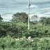 """Blogbeitrag """"Tulum Road, Mexico"""""""