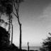 "Blogbeitrag ""Coastal Breaks"""