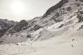 Die Lawinenhundestaffel der Bergwacht Bayern