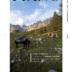 """Blogeintrag """"PIANO FISCHER – Magazin Vol.2"""""""
